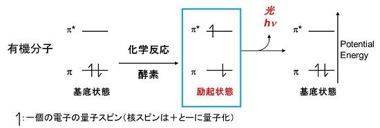 ResearchBL2:OrgChemAGR@KobeU